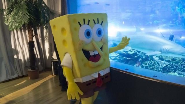 SpongyaBob teljes életnagyságban látogat a Tropicariumba