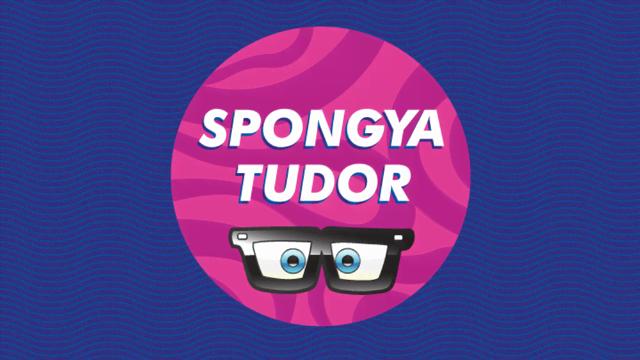 SpongyaBob-szakértőt keres a Nickelodeon