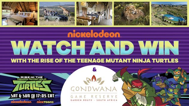 Rise of the TMNT Watch 'n Win Competition