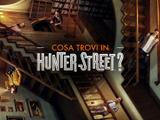 Cosa trovi in Hunter Street?