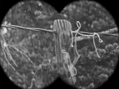 Alvin és a Mókusok - 1920' verzió